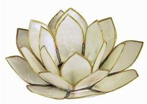 Akashic Record Giant Lotus Blossom